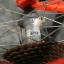 เสือภูเขาCannondale F700 ล้อ26นิ้ว Hand made USA ไซส์ M thumbnail 4