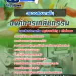 สุดยอดแนวข้อสอบงานราชการไทย ตรวจสอบภายใน องค์การเภสัชกรรม อัพเดทในปี2560
