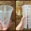 แก้ว 2 ช่อง พร้อมฝา (10 ใบ) thumbnail 3
