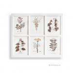 ภาพพิมมพ์ลายดอกไม้และใบไม้ 6 ช่อง กรอบไม้สีขาว
