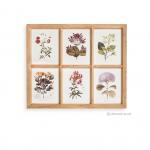ภาพพิมพ์ลายดอกไม้ 6 ช่อง กรอบไม้