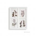 ภาพพิมพ์ลายดอกไม้และใบไม้ 4 ช่อง กรอบไม้สีขาว