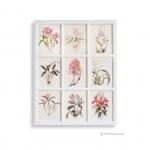 ภาพพิมพ์ลายดอกไม้สีชมพู 9 ช่อง กรอบไม้สีขาว