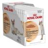 อาหารแมวแบบเปียก Royal Canin Intense Beauty สามโหล1220รวมส่ง