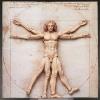 Figma Vitruvian Man (Reissue)