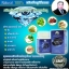DIAMOND BLUE ไดมอนด์ บลู ผลิตภัณฑ์เสริมอาหารผสมเหง้าบัว ชนิดแคปซูล ตราหมอเส็ง thumbnail 3