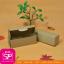 กล่องชิ้นเดียวฝาเปิดด้านบน สีคราฟธรรมชาติ ขนาด 5 x15 x 5 ซม. (บรรจุ 50 กล่องต่อแพ็ค) thumbnail 1