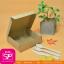 กล่องขนมฝาในตัว สีคร๊าฟน้ำตาล ขนาด 15 x 15 x 5 ซม. (บรรจุ 50 กล่องต่อแพ็ค) thumbnail 1