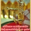 เจดีย์ยอดทอง เทพทันใจรวยเงินล้าน จ้าวปู่พญานาคาธิบดีศรีสุทโธ By คุณท๊อป thumbnail 1