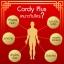 Cordy Plus คอร์ดี้ พลัส ถั่งเช่า อ.วิโรจน์ 12xx-15xx thumbnail 4