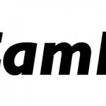 CamFi